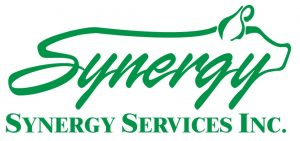 Synergy Services Inc. logo